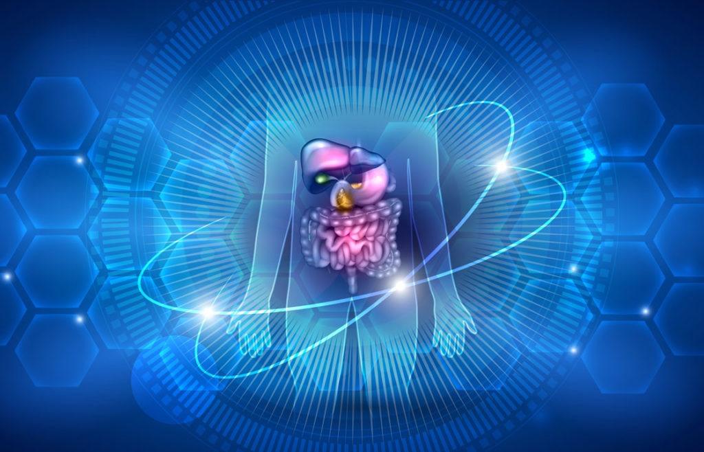 Die Probiotische Medizin befasst sich mit den in und auf uns lebenden Mikroorganismen.