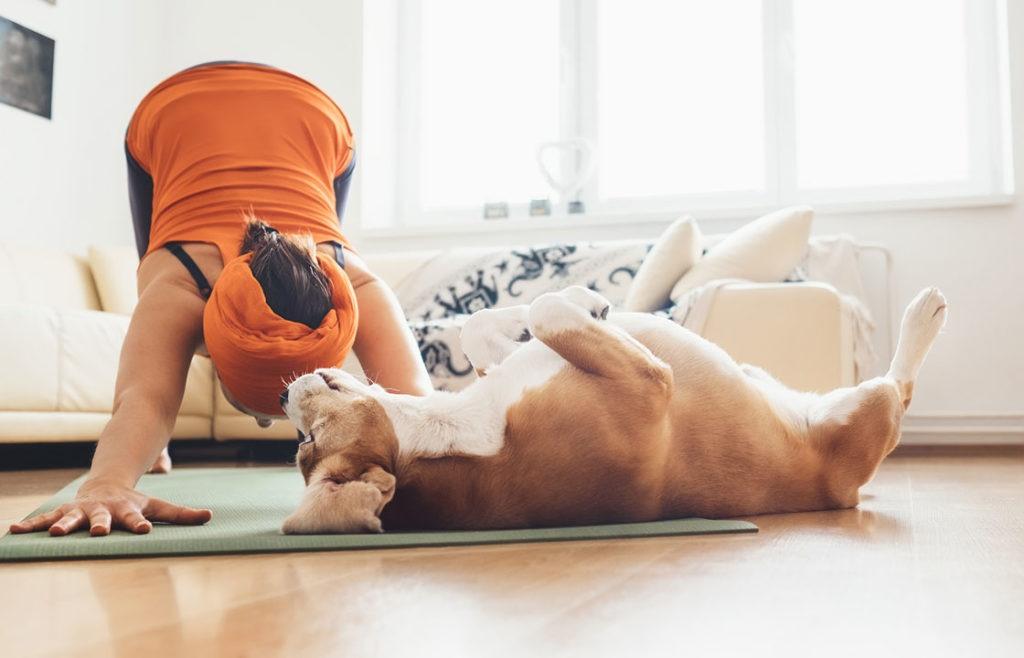 Yoga-Übungen fördern die Reduktion von Stress.
