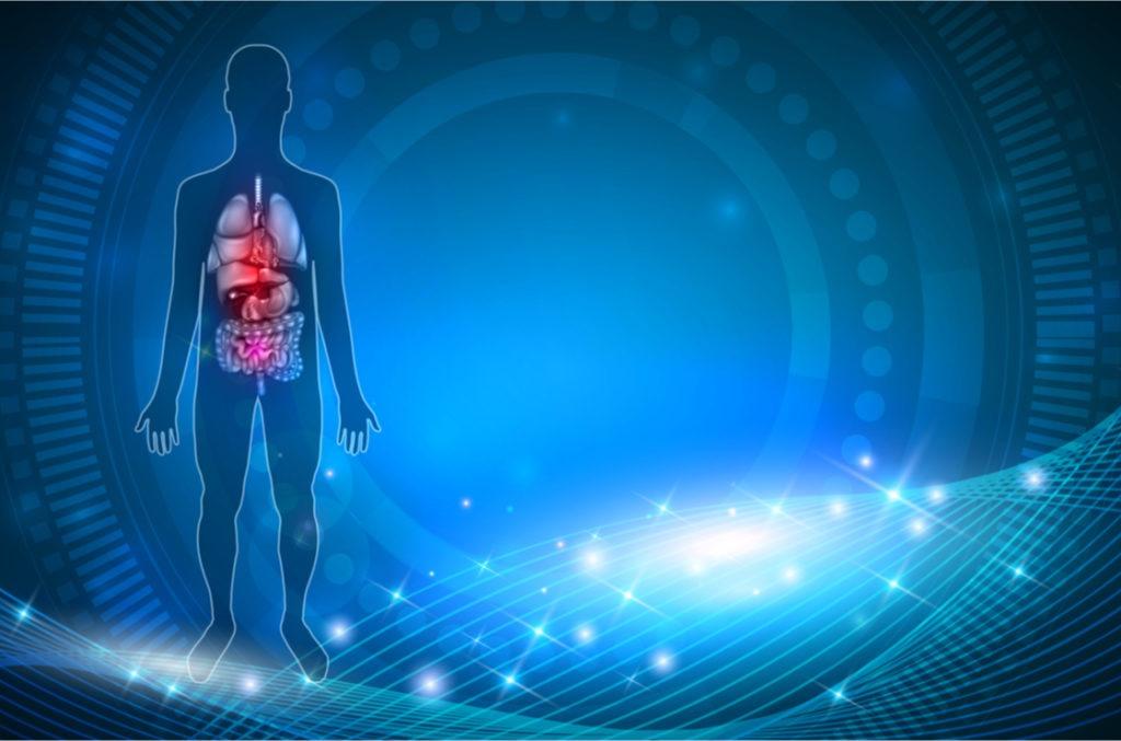 asthma bronchiale - so entsteht es