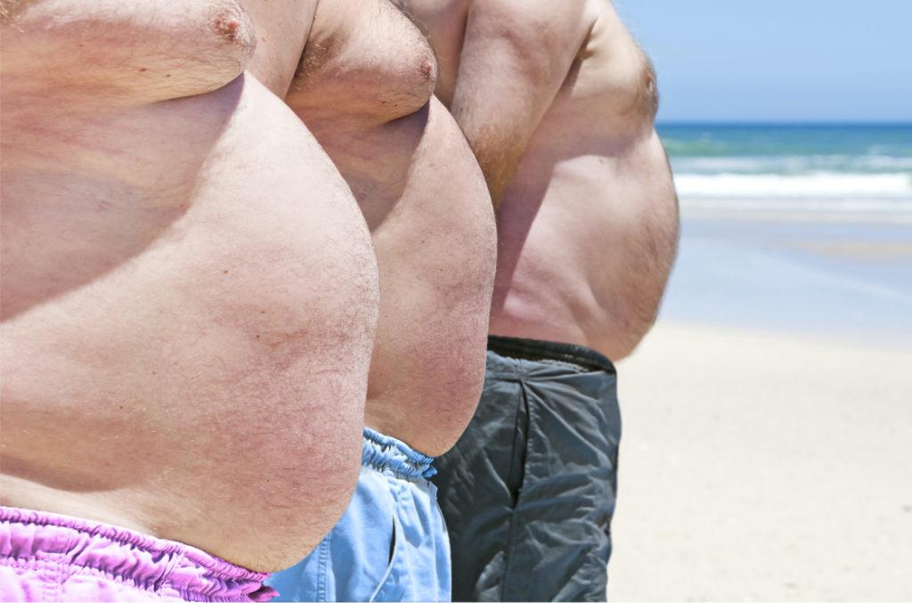 Firmicutes sind ja auch bekannt dafür, Übergewicht zu fördern. Enterotyp 3