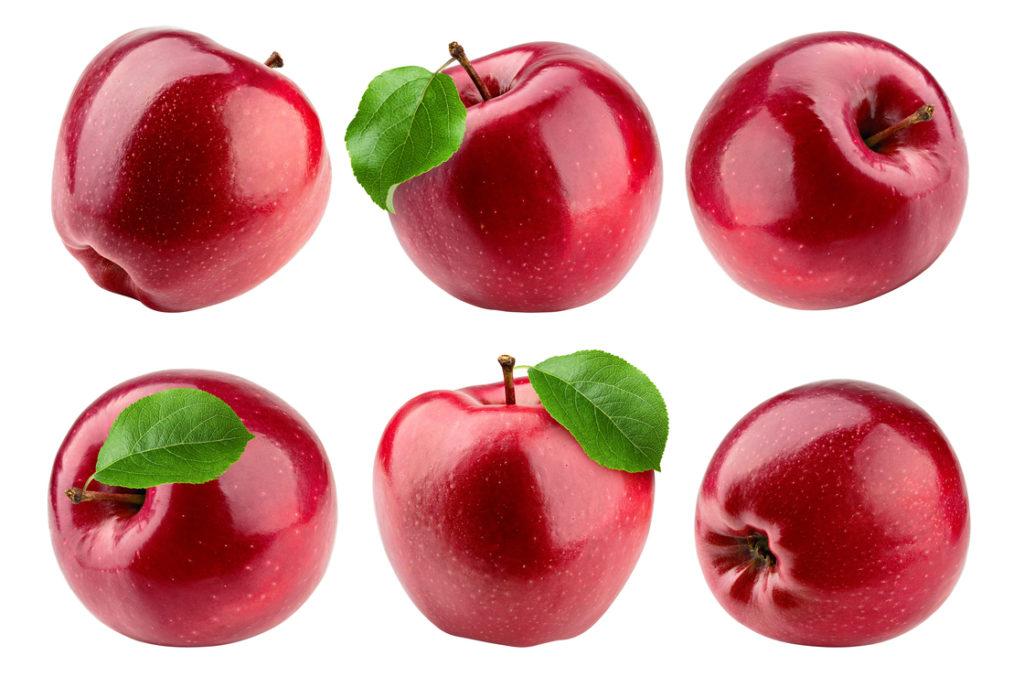 Apfelpektin ist ein wichtiges Futter für unsere Bakterien.
